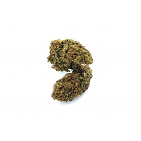 https://www.king-of-cbd.com/fleurs-de-cbd/77-girl-scout-cookies.html