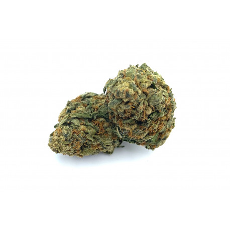 https://www.king-of-cbd.com/fleurs-de-cbd/62-harlequin.html